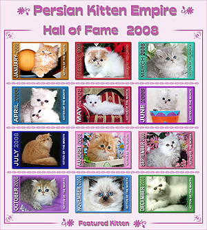 Hall of Fame 2008 - Click HERE