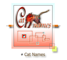 Cat Names from A to Z