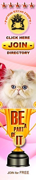 Persian Kittens for SALE - GLOBAL Breeder Directory
